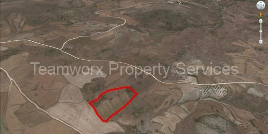 Field For Sale In Ineia, Paphos